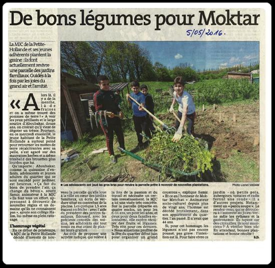 Vign_Article_jardin0